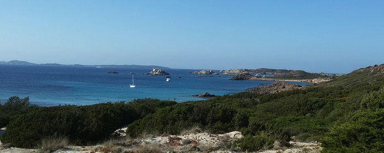 anchorage-maddalena-main(pics.1).jpg